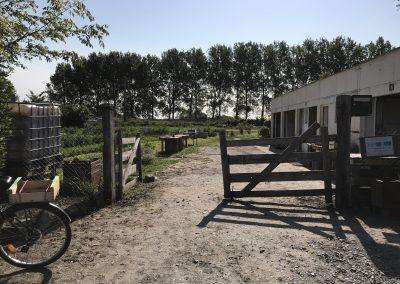 jardin vit actif isigny sur mer